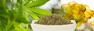 Hemp Health and Innovation Expo - Melbourne