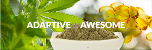 Adaptive and Awesome - Hemp Health and Innovation Expo